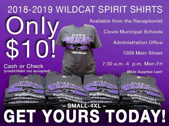 Image of text announcing sale of 2018-2019 spirit shirts